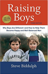 Sonhood parent coaching resources raising boys book cover